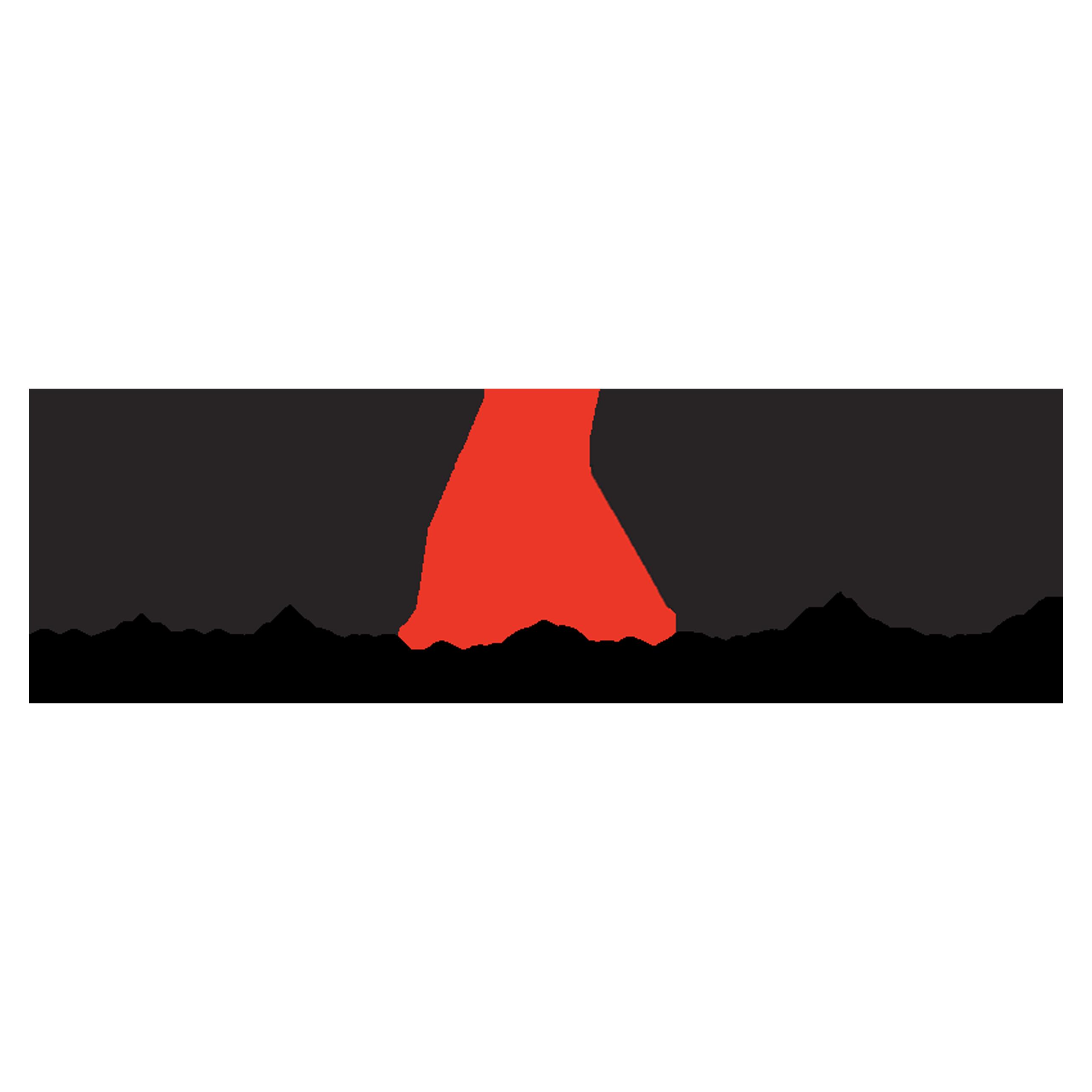 New Yorkers Againt Gun Violence (NYAGV) logo
